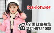 dishion的純