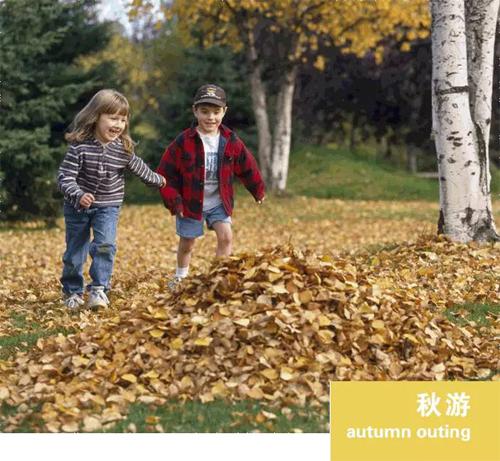 秋游计划—用足迹追赶秋季