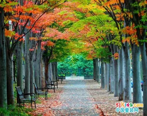 季季乐童装:秋日街头,卫衣当道
