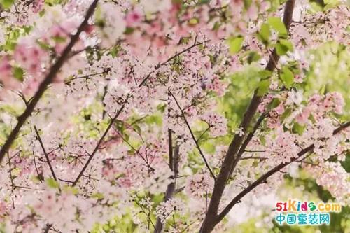 春季上新|和帮登一起品尝春天!