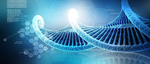 "KIKI小鬼当家   基因定制?""我们""的基因一直在定制!"