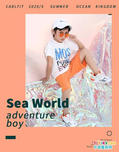 海洋系列丨带你探索海底世界的花漾夏天
